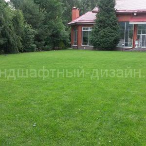 Рулонный газон - студия Ландшафтный Дизайн РФ