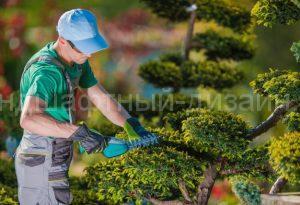 Услуги садовника - ландшафтный дизайн в Москве
