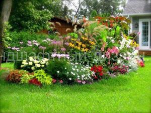 клумбы и цветники - Ландшафтный Дизайн РФ