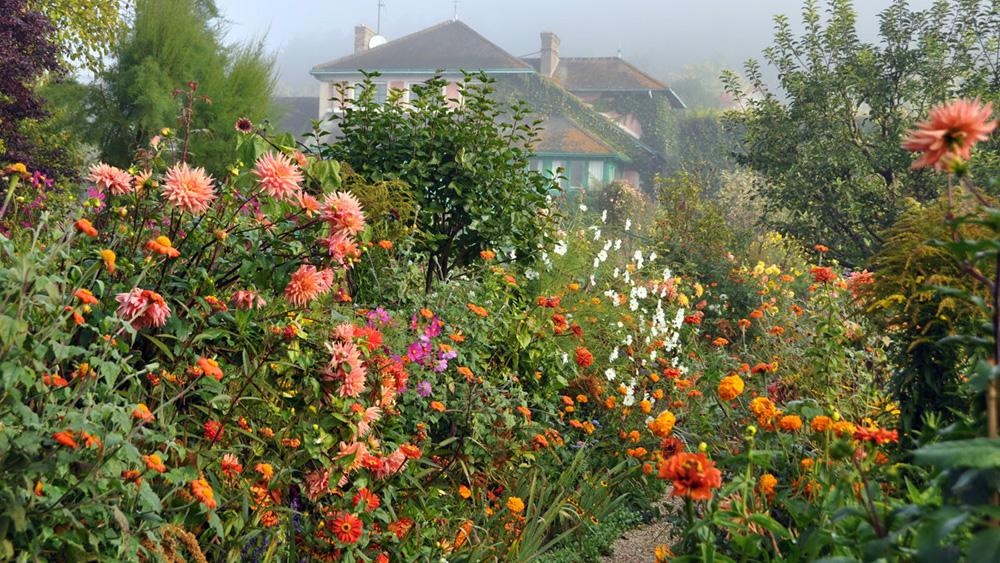 Уход за садом в октябре - Уход за садом осенью