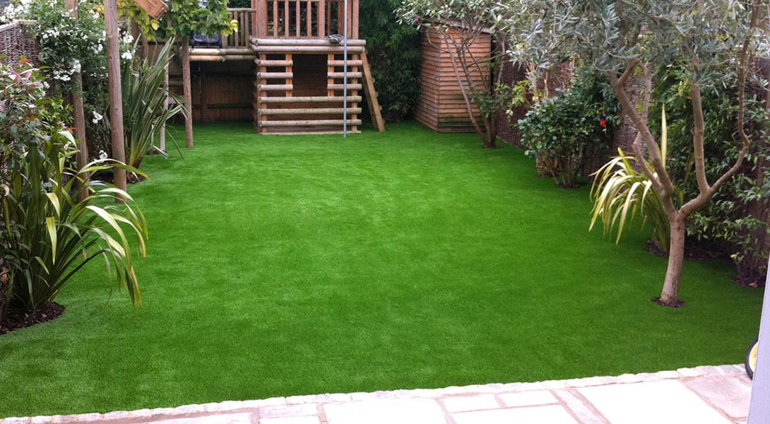 Газонная трава. Как выбрать? Какая лучше?